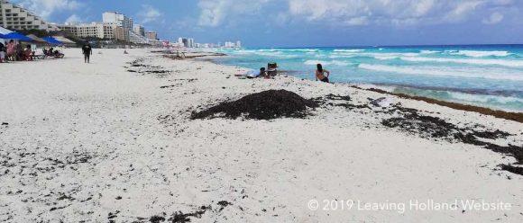 cancun, playa del Carmen, tulum, zeewier, sargassum, yucatan, strandvakantie