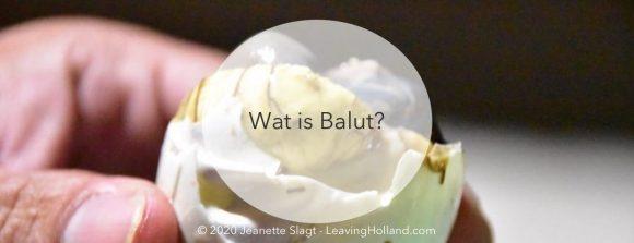 wat is balut, filipijnen