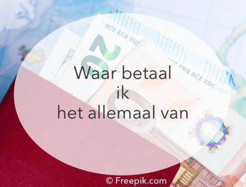 rekeningen betalen, reizen en werken, online inkomen